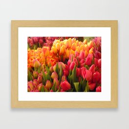 Tulips at Pike Place Market Framed Art Print