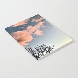 Cotton Candy Notebook