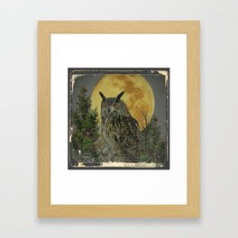 SHABBY CHIC ANTIQUE NIGHT OWL  FULL MOON Framed Art Print