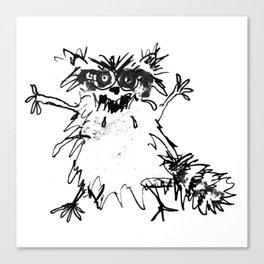 Wild Coon Canvas Print