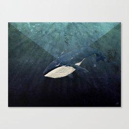 Everett's Whale Canvas Print