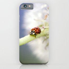 Dandelion Ladybugs iPhone Case
