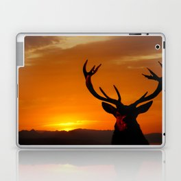 Highland Stag Laptop & iPad Skin