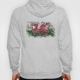 Welsh Dragon Hoody