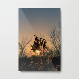 Final Sunset Metal Print