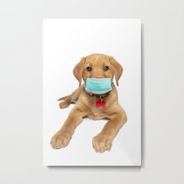 Pandemic Puppy in a Face Mask Metal Print