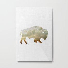 Bison and Plains Metal Print
