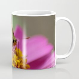 Colorful Skipper Butterfly Coffee Mug