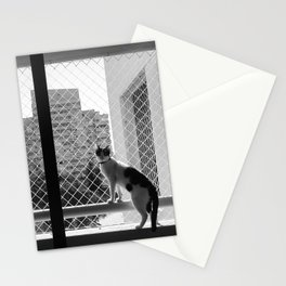 Cat looking back Stationery Cards