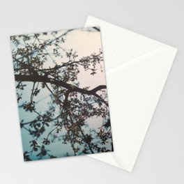 dreaming 2 Stationery Cards