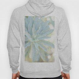 Mint Green Cactus succulent Cactus Flower Nature Floral Fine Art Wall Print Hoody