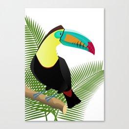Bright Toucan bird in jungle Canvas Print