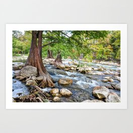 Guadalupe River in Texas Art Print
