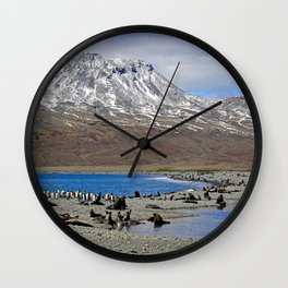 Fur Seals on the Beach Wall Clock