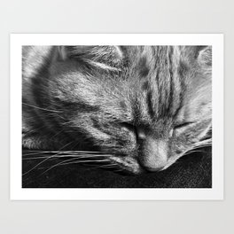 Bridget Rests Art Print