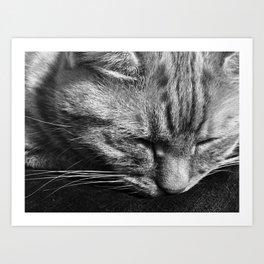 Bridget Rests Art Print