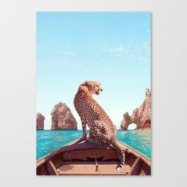 Los Cabos Canvas Print