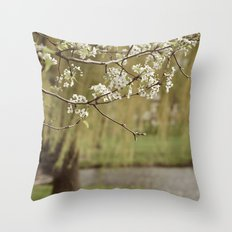 Spring-scape Throw Pillow