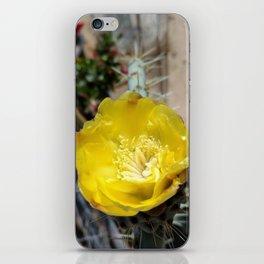 PRICKLY PEAR CACTUS FLOWER iPhone Skin