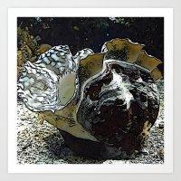 seashell Art Prints featuring seashell by MehrFarbeimLeben