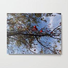 Cranberries & Sky Metal Print