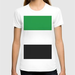 flag of Putumayo  (colombia) T-shirt