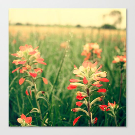 Wild flowers! Canvas Print
