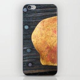 One Fallen Leaf iPhone Skin