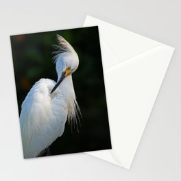 Obsessive Issues  Stationery Cards