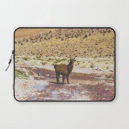 Llama Crossing in Bolivia Laptop Sleeve
