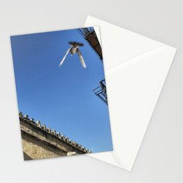 Mezquita Dove Stationery Cards