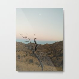 Mt. Lemmon Metal Print
