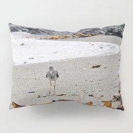 Greater Yellowlegs Strolling on the Beach Pillow Sham