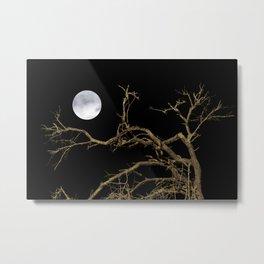 Nature Dark Scene Metal Print