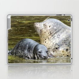 Harbor Seal Sweetness Laptop & iPad Skin
