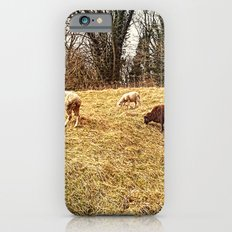 Black Sheep iPhone 6s Slim Case