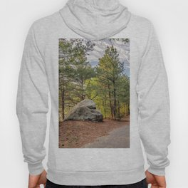 Heart of the woods Hoody