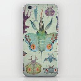 Cephalopodoptera Tab. I iPhone Skin