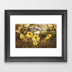Five Flowers Framed Art Print