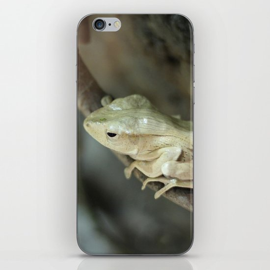 Froggy style iPhone & iPod Skin