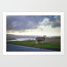Roadside on Skye Art Print