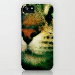 Puss iPhone Case