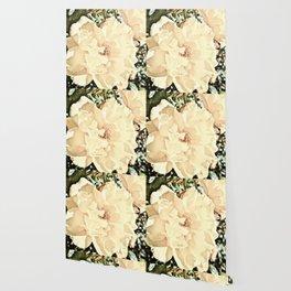 Sandy Pink Roses With Bokeh Wallpaper