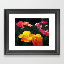 Poppies Four Framed Art Print