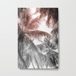 High palms on a tropical beach Metal Print
