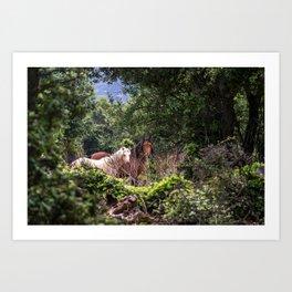 Hidden Horses Art Print