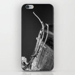 Heart of Nature iPhone Skin