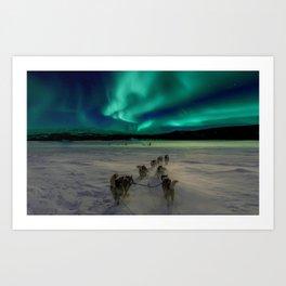 Winter Northern Lights Dog Sled (Color) Art Print