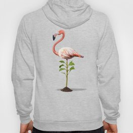 Planted (Colour) Hoody