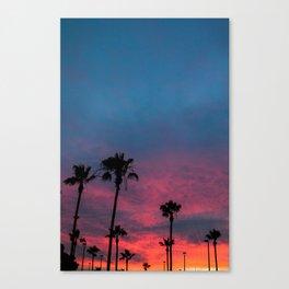 Fruit Punch - San Diego Canvas Print